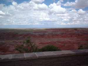 petrifiedforest_painteddesert.jpg